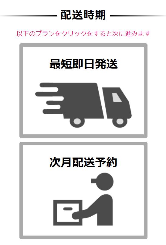 mugenwifi配送方法選択画面